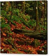 Northside Of Mount Greylock At Acrylic Print