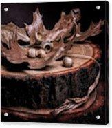 Oak Tree Still Life Acrylic Print