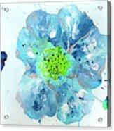 Oceanbreeze Blue-green Windflower Acrylic Print