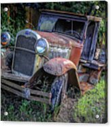 Old Model Aa Ford In The Jungle 2 Acrylic Print
