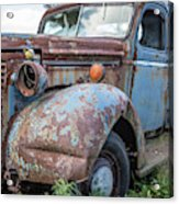Old Vintage Blue Pickup Truck Among The Weeds Acrylic Print