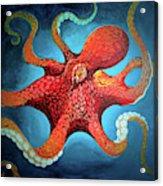 Optical Octopus Acrylic Print