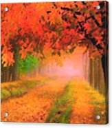 Orange Fall Acrylic Print