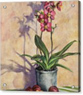 Orchids And Plums Acrylic Print