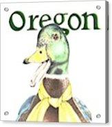Oregon Duck Acrylic Print