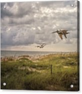 Over The Dunes Acrylic Print