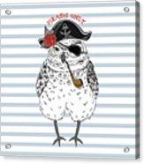 Owl Pirate, Nautical Poster, Hand Drawn Acrylic Print