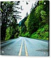 Pacific Northwest Road Acrylic Print