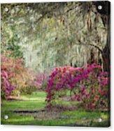 Paintely Garden Acrylic Print