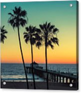 Palm Trees At Manhattan Beach. Vintage Acrylic Print