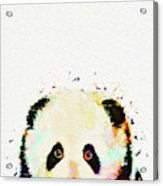 Panda Watercolor Acrylic Print