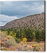 Panorama Of Cliff Dwelling And Fall Cottonwoods In Frijoles Canyon - Bandelier National Monument  Acrylic Print