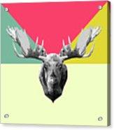 Party Moose Acrylic Print