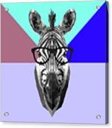 Party Zebra In Glasses Acrylic Print