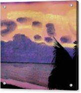 Pastel Palm Tree Sunrise Acrylic Print