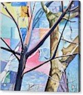 Patchwork Trees Acrylic Print