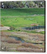 Peaceful Farm In Durango Acrylic Print