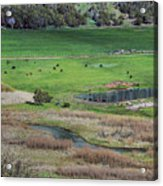 Peaceful Farm Acrylic Print
