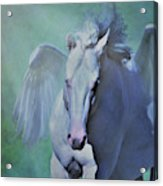 Pegasus Fantasy Acrylic Print