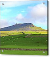 Penyghent In Yorkshire Dales National Park North Yorkshire Acrylic Print
