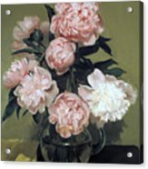 Peonies Front And Center Acrylic Print