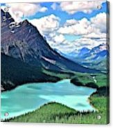 Peyto In August Acrylic Print