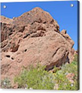 Phoenix Arizona Papago Park  Blue Sky Red Rocks Scrub Vegetation Yellow Flowers 3182019 5340 Acrylic Print