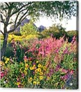 Phoenix Botanical Gardens Acrylic Print
