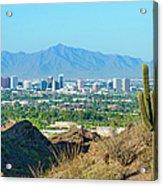 Phoenix Skyline Framed By Saguaro Acrylic Print
