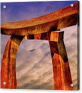 Pi In The Sky Acrylic Print