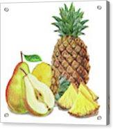 Pineapple Pear Watercolor Food Illustration  Acrylic Print