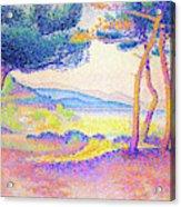 Pines Along The Shore - Digital Remastered Edition Acrylic Print