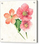 Pink And Orange Flowers On Subtle Cream Marble Acrylic Print