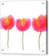 Pink Beauties Watercolor Painting Acrylic Print