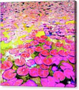 Pink Lily's Acrylic Print