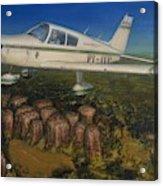 Piper Cherokee -140 Acrylic Print