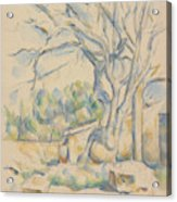 Pistachio Tree At Chateau Noir Acrylic Print