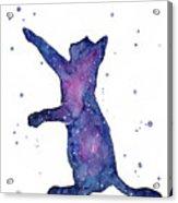 Playful Galactic Cat Acrylic Print