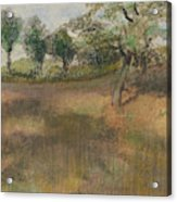 Ploughed Field Bordered By Trees Acrylic Print