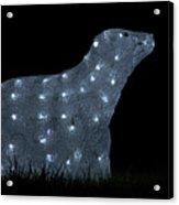 Polar Bear Decoration Acrylic Print