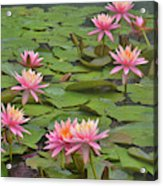 Pond Decor Acrylic Print