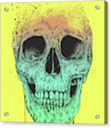 Pop Art Skull Acrylic Print