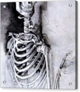 Portrait Of A Skeleton Acrylic Print