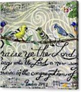 Praise Birds Acrylic Print