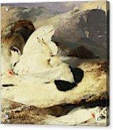 Ptarmigan In A Landscape, 1833 Acrylic Print