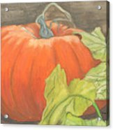 Pumpkin In Patch Acrylic Print