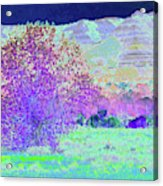 Purple Tree Reverie Acrylic Print