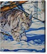 Quiet Walker Acrylic Print