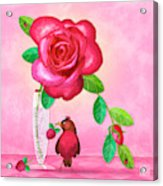 R Is For Rose And Robin Acrylic Print