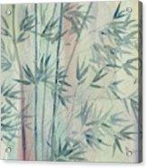 Rainforest Bamboo Acrylic Print